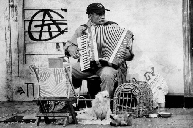 street musician, 2015